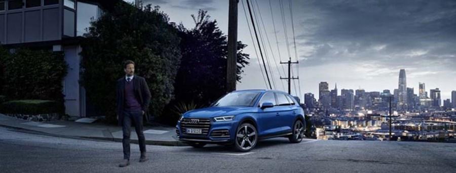 Audi Q5 TFSI e        (Hybrid)