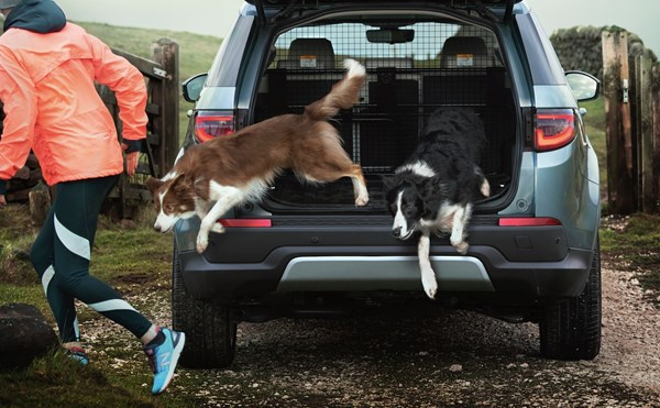 5 Reasons Why Jaguar Land Rover Is A Dog's Best Friend